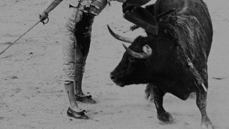 serie matador
