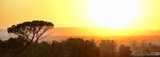 under the tuscan sun-IV